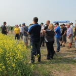 Clint Jurke speaking on this year's Ultimate Canola Challenge at the Scott Field Day.